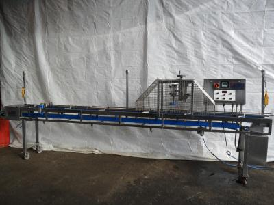 Riggs - peg indexing conveyor